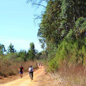 floresta_nacional_de_brasilia_danubia_melo_33